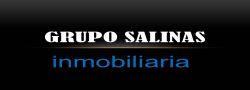 grupo salinas agentes inmobiliarios