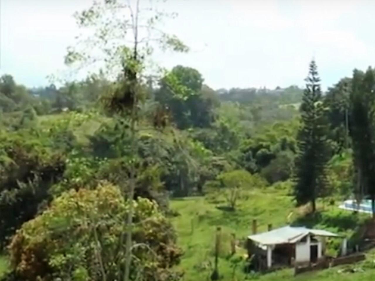 Lote en Bucaramanga 101569, foto 2