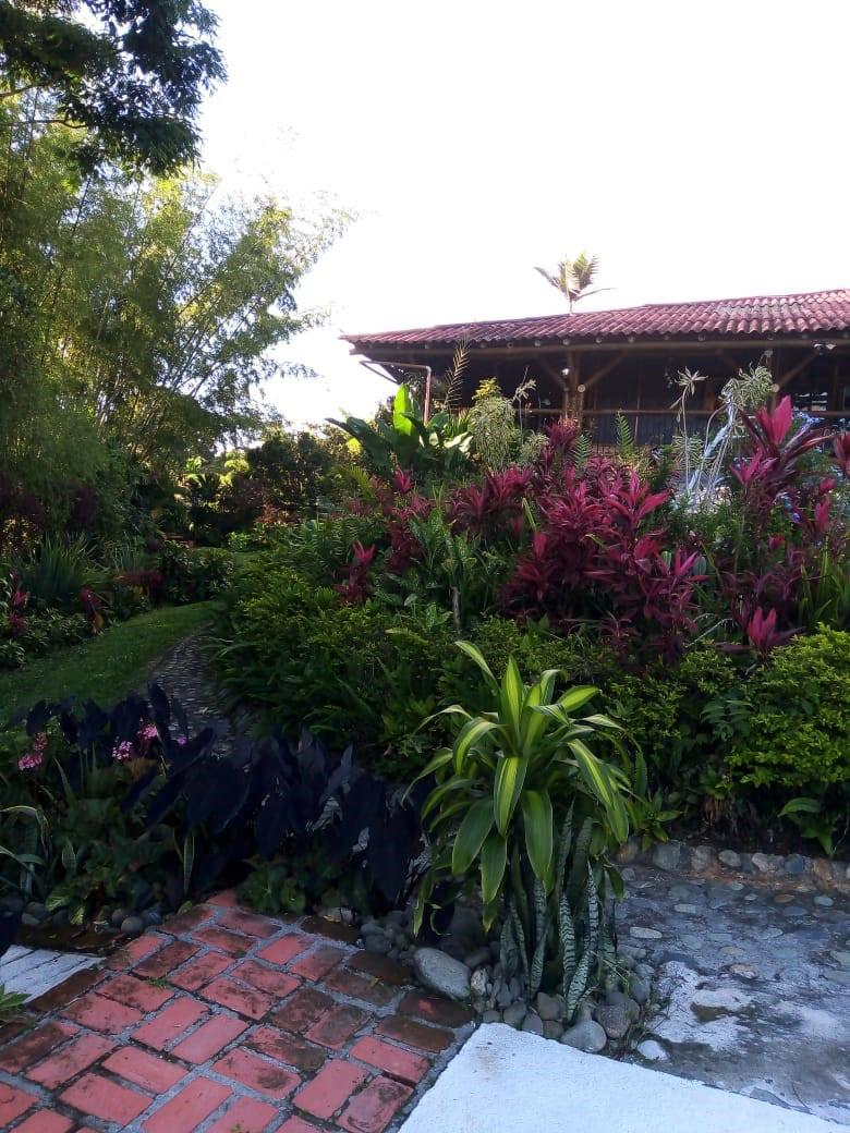 Finca en La tebaida 96730, foto 10