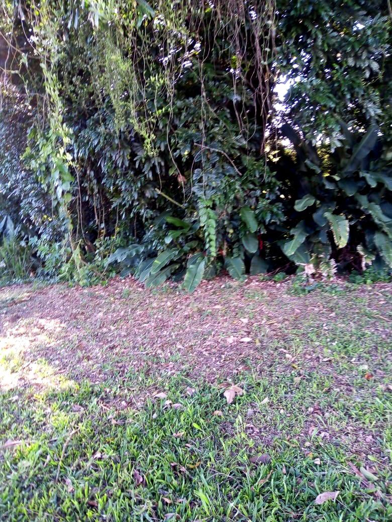 Finca en La tebaida 96730, foto 16