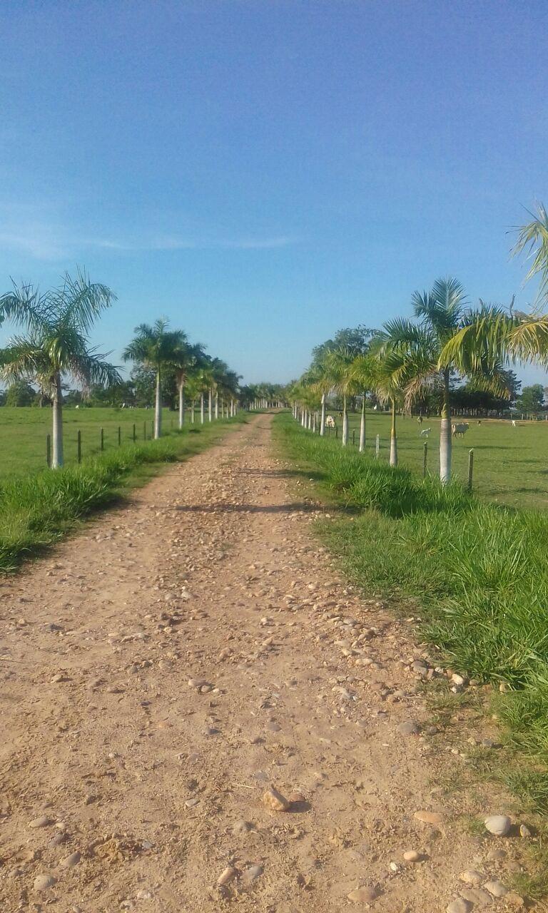 Finca en Puerto boyaca 106982, foto 2