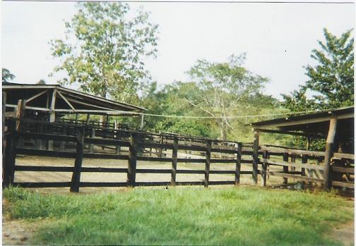 Finca en Puerto boyaca 106887, foto 7