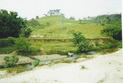 Finca en Puerto boyaca 106887, foto 9
