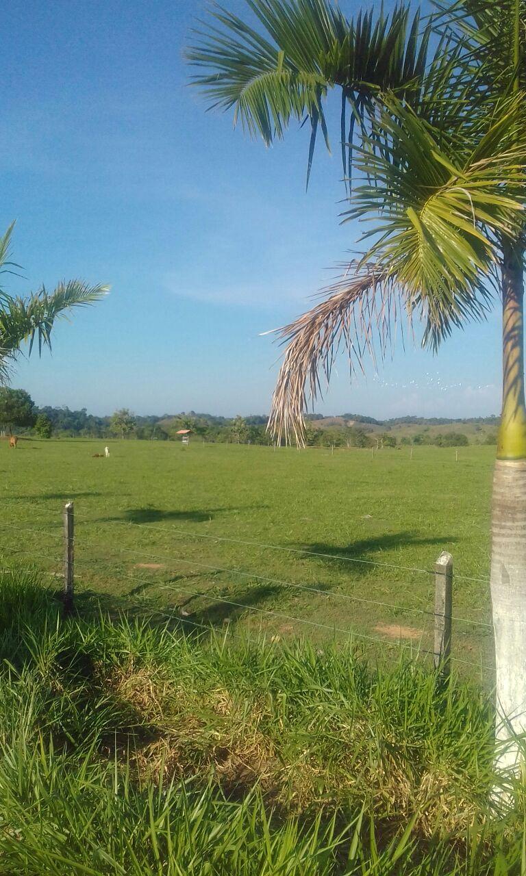 Finca en Puerto boyaca 106982, foto 15