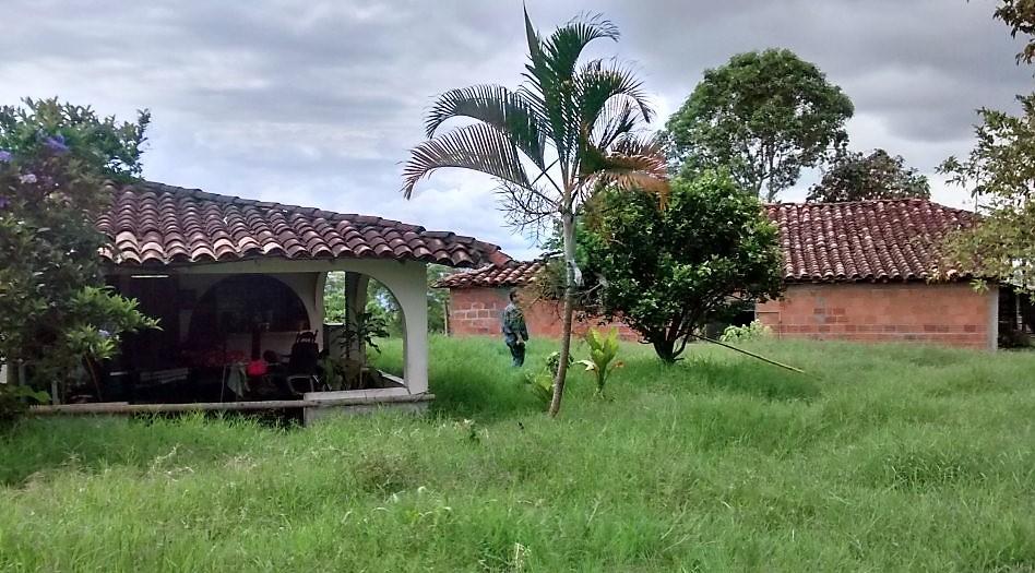 Apartaestudio en Alcala 106791, foto 1