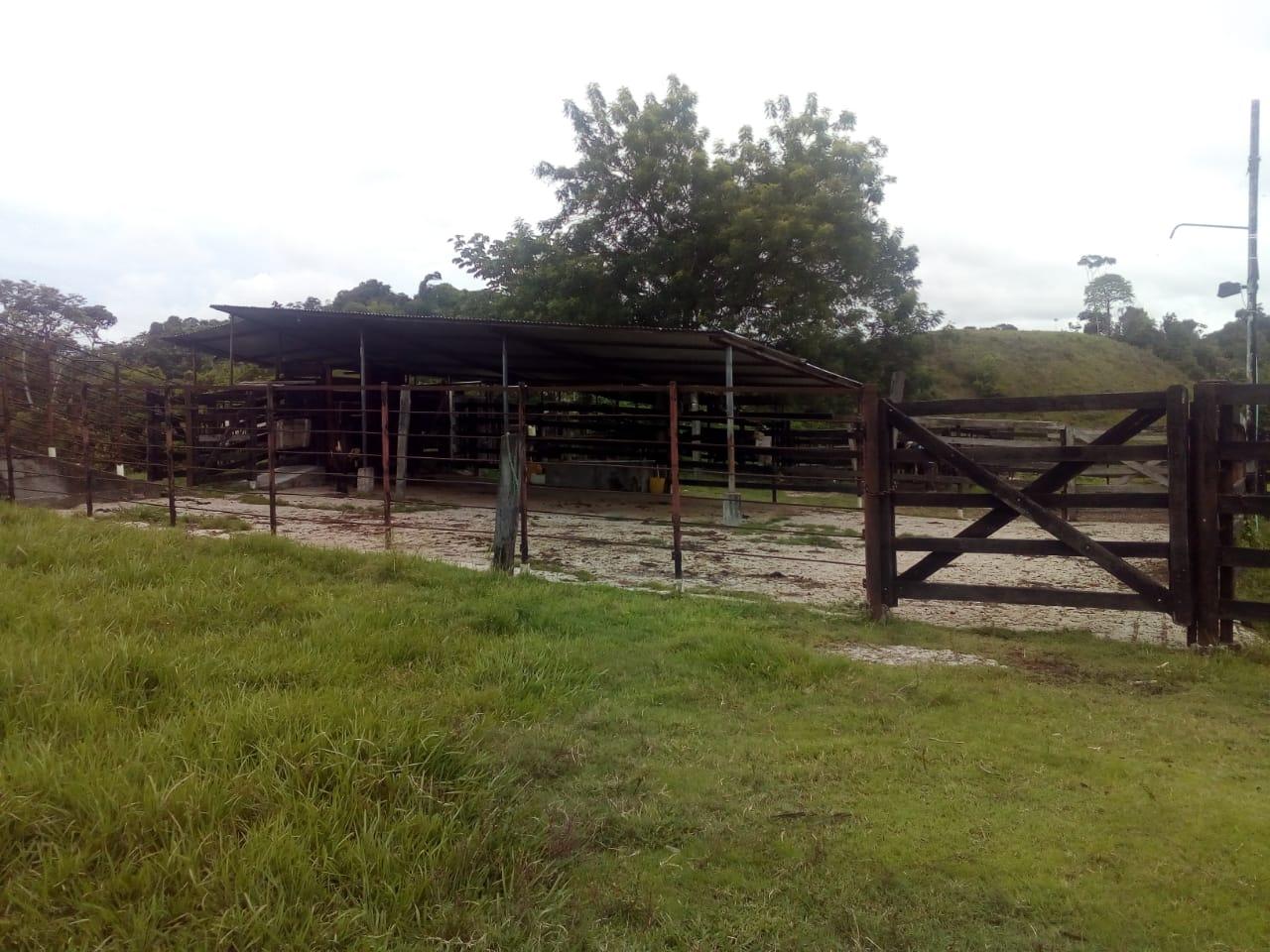 Finca en Puerto boyaca 106887, foto 29