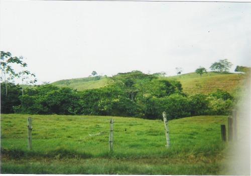 Finca en Puerto boyaca 106887, foto 3
