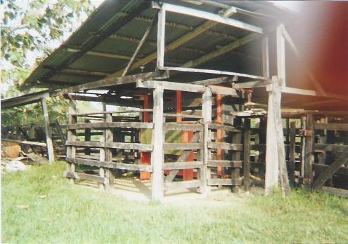 Finca en Puerto boyaca 106887, foto 14