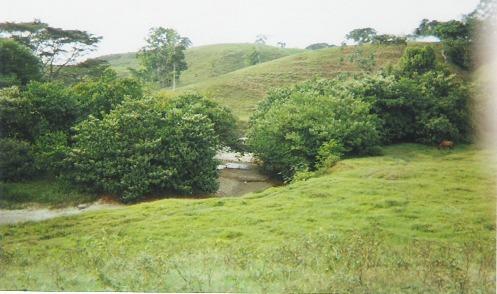 Finca en Puerto boyaca 106887, foto 6