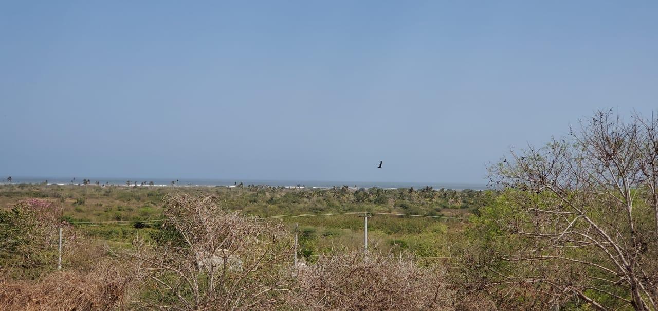 Lote en Cartagena de indias 109956, foto 23