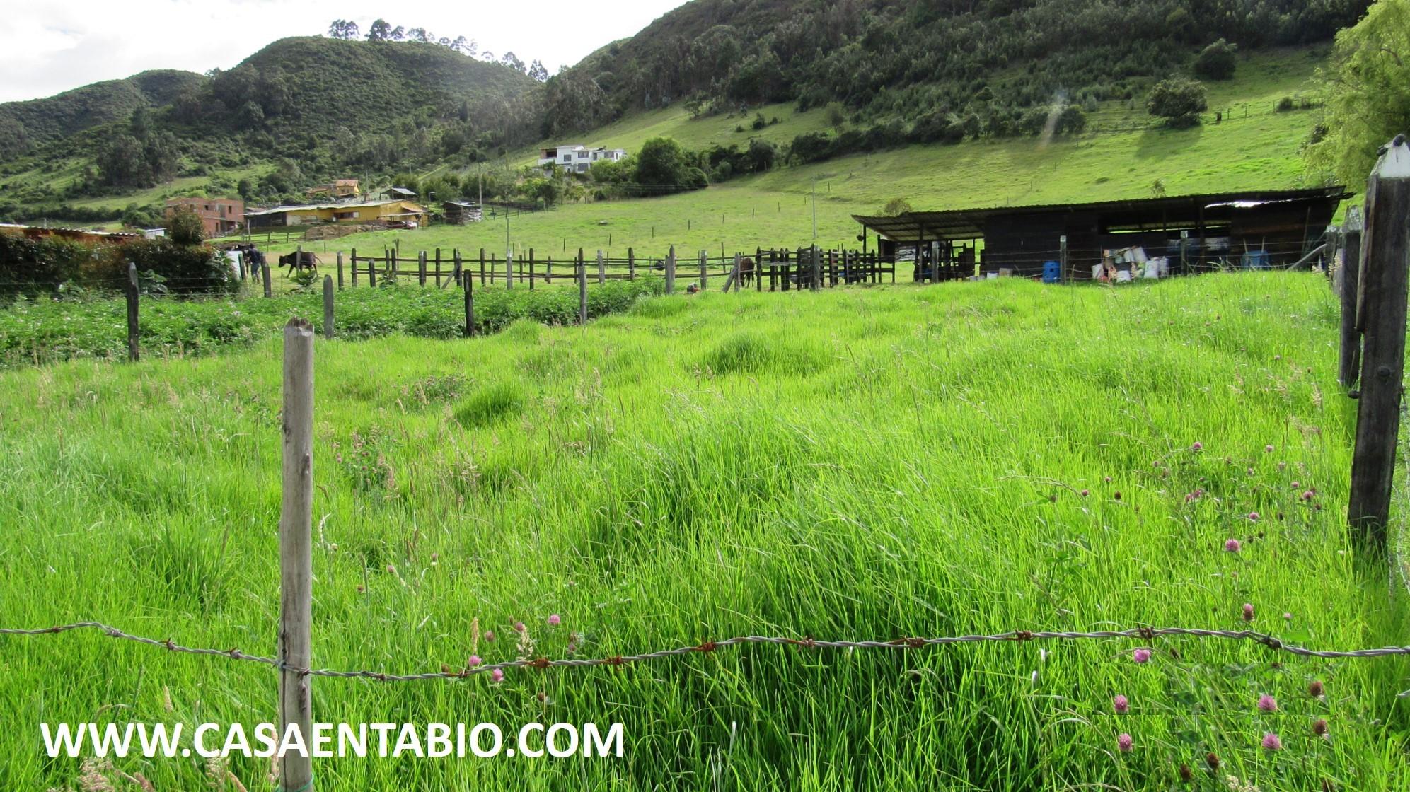 Lote en Tabio 101949, foto 14