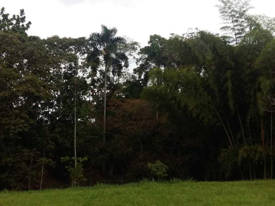 Lote en Pereira 109140, foto 17
