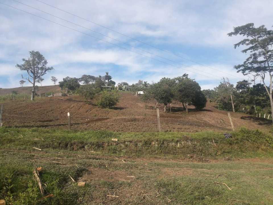 Finca en Chitaraque 109524, foto 20