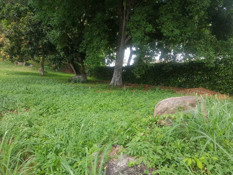 Lote en Anapoima 131659, foto 7