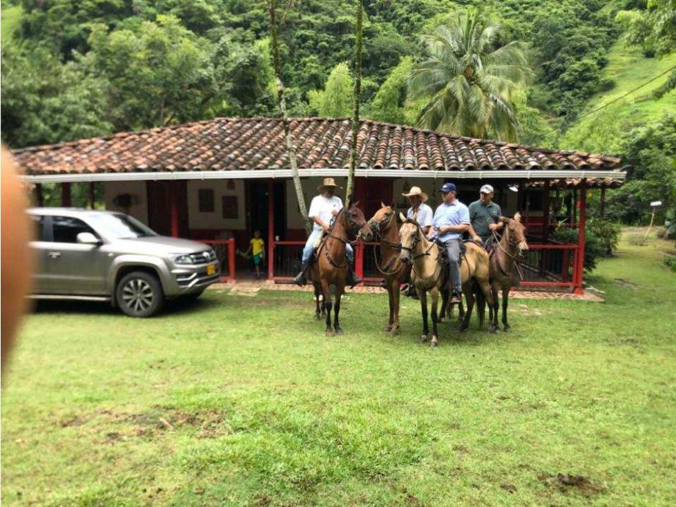 Foto Finca en Venta en Santa B�rbara, Antioquia - $ 3.000.000.000 - wa3242523 - BienesOnLine