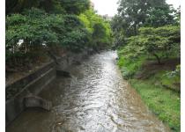 historia del rio cali