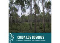 cuida los bosqueses nuestro futuro verde
