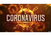 como manejar mi negocio de bienes raices desde mi casa en tiempos de coronavirus