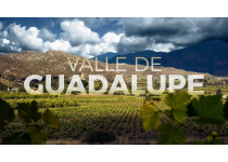 valle de guadalupe information