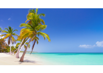 the pristine white sand beaches of punta cana