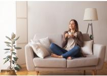 como transformar tu hogar con armonia y valor estetico