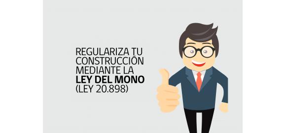 ley del mono se extiende regularizacion hasta el 2022