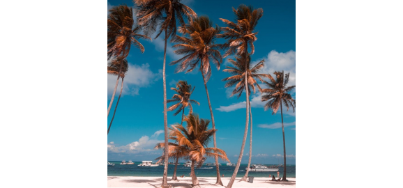 why to invest in punta cana