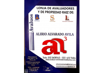 SERVICIO PROFESIONAL DE AVALUOS A NIVEL NACIONAL CON REGISTRO ABIERTO DE AVALUADOR (RAA)