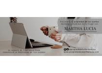 agente y asesora en propiedad raiz a nivel nacional e internacional