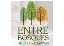 proyecto vis entrebosques de las margaritas